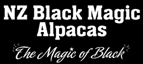 NZ_Black_Magic_Logo.png