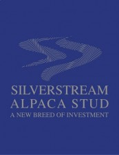 silverstream_logo_.jpg