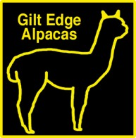 Gilt_Edge_Logo.jpg
